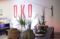 DKO celebrate new Auckland office