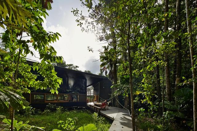 Jungle journey: Cape Tribulation House