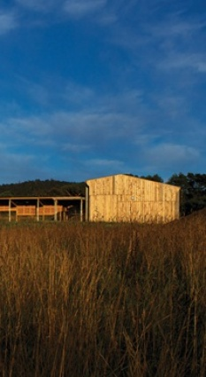 The continuous macrocarpa skin wraps around the building to create a robust form.