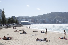 Wellington: Out & About