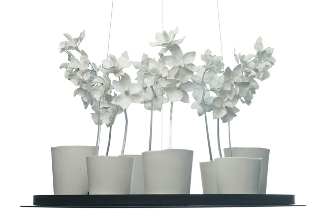 Cymbidium chandelier by Jeremy Cole.
