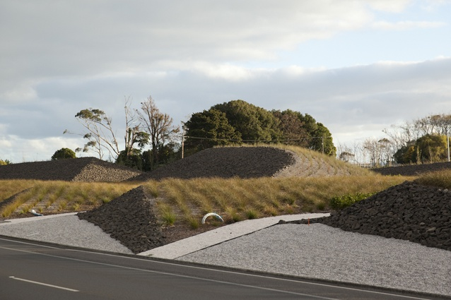 Auckland airport landscapes architecture now for Landscaping auckland