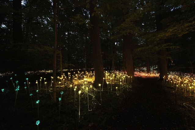 Bruce Munro's Forest of Light.