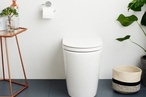 New Caroma Cleanflush toilets