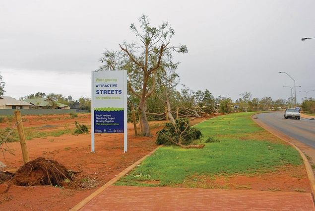 """We're growing attractive streets."" Living in a cyclonic belt: newly planted trees were blown over by Cyclone George in March 2007."