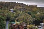 Deep south: Stewart Island Crib