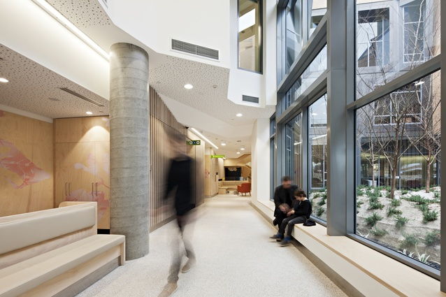 The interior of the Albury Wodonga Regional Cancer Centre designed by Billard Leece Partnership.