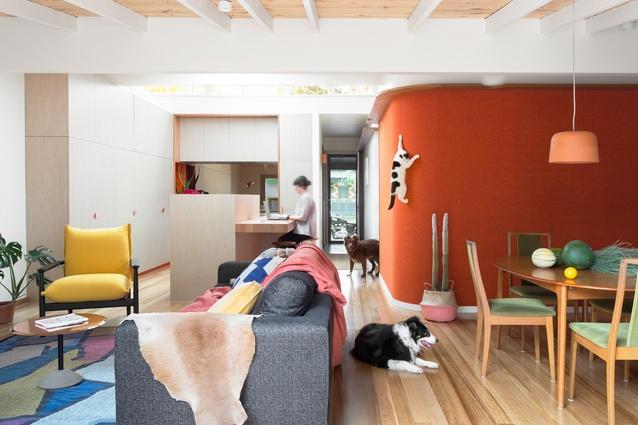 Casa de Gatos by WOWOWA Architecture and Interiors.
