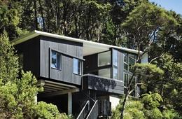 "An ""apartment"" in Wellington's bush"