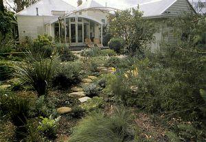 The 'Dalmatian meadow' garden at Murphy Street, Richmond, 1989.
