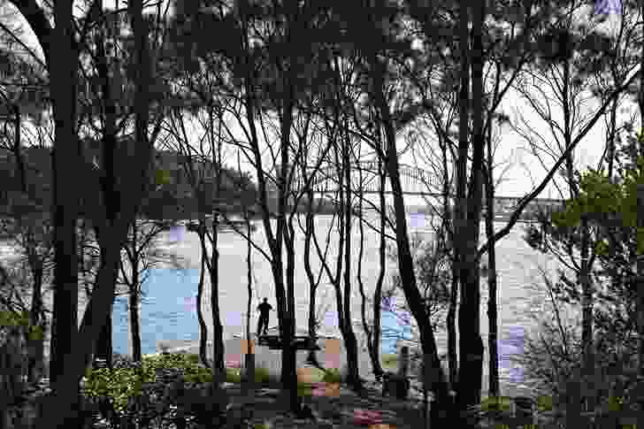 Yurulbin Reserve captures the image of Sydney Harbour and its surroundings. It was developed during the 1970s.
