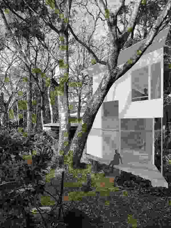 """Taringa Treehouse proposes an """"adult cubbyhouse"""" that strives to amplify the beautiful experiences of its natural surrounds."""