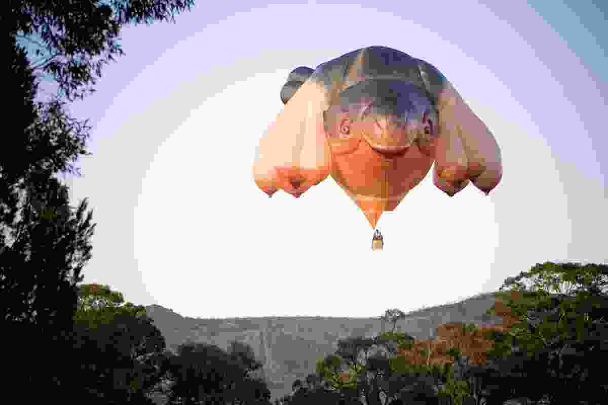 Patricia Piccinini, Skywhale 2013, nylon, polyester, nomex, hyperlast, cable, 340 x 230 x 200 cm, commissioned for The Centenary of Canberra.