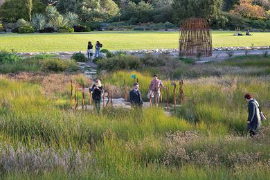 The Adelaide Botanic Garden First Creek Wetland designed by Taylor Cullity Lethlean with SKM, David Lancashire Design and Paul Thompson.