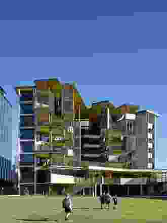 "Cox Architecture的规划围绕着一个绿色的""绿洲""安排了不同的学校区域,这是建筑景观的焦点。"