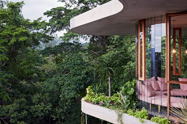 Planchonella House by Jesse Bennett Architect Builder.