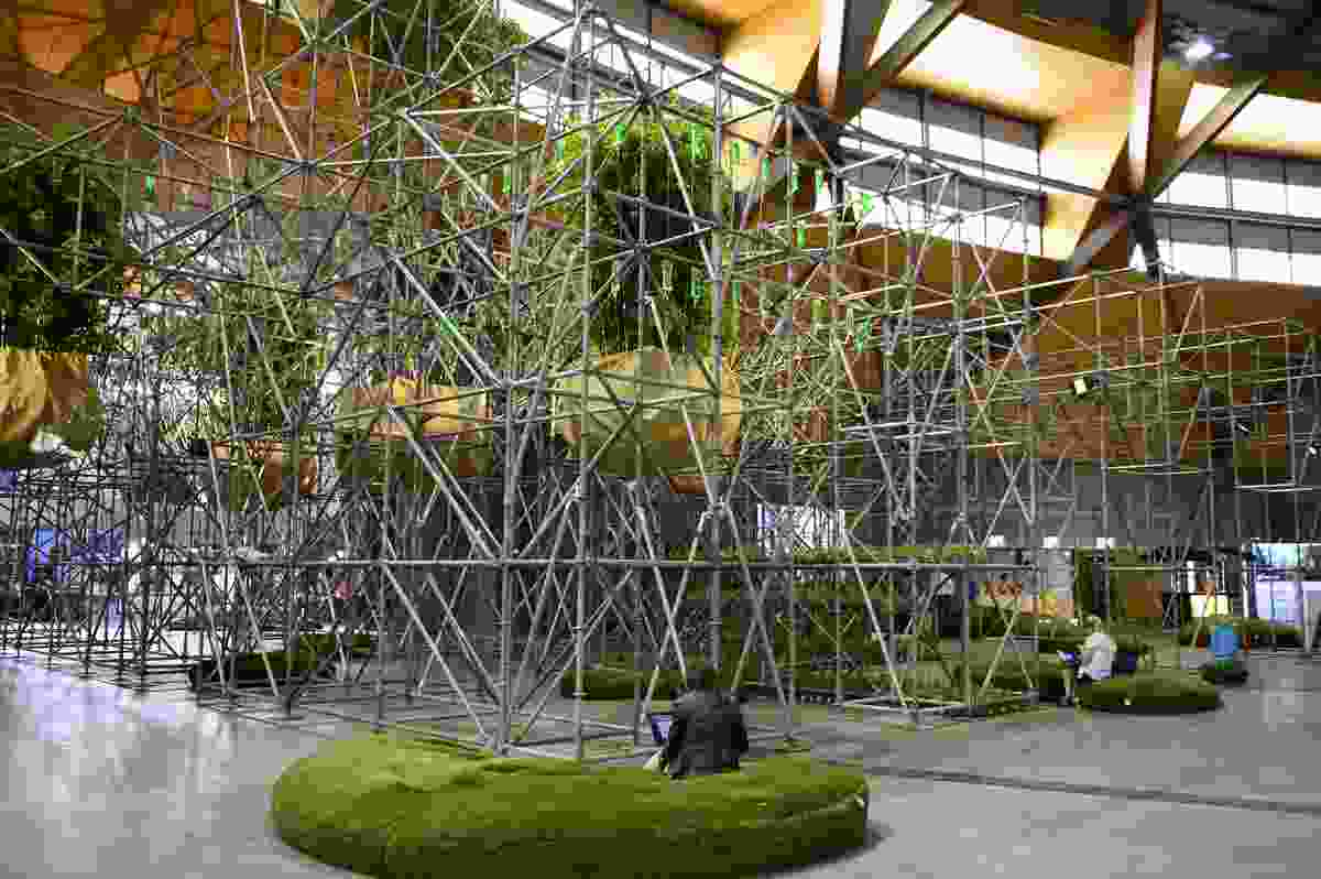 Nature's Cathedral by OUTR Research Lab, RMIT University.