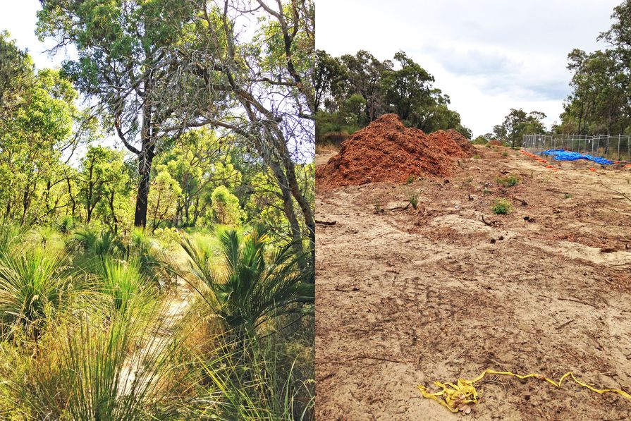 The Malvolio Road reserve site in Coolbellup, WA in December 2016 (left), and again in March 2017 (right) after it was cleared to make way for the Perth Freight Link.