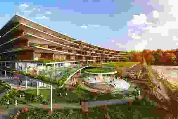 Gilruth大道25号,花园,Hachem设计。