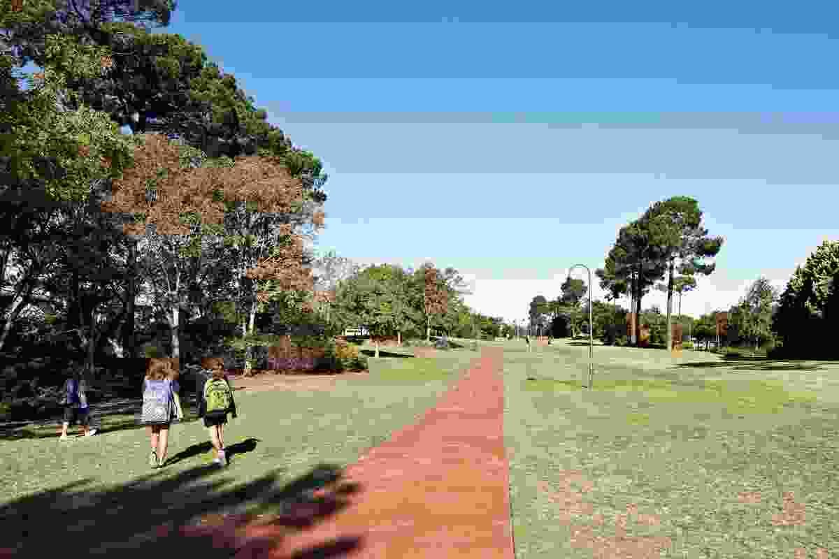 Pathways through Forestview Park.