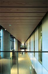 """The boulevard seen from the mezzanine bridge. Travertine and timber contrast with the off-form concrete columns and glass """"bar"""" that define the linear space."""