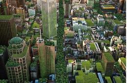 2014 Victorian Landscape Architecture Awards