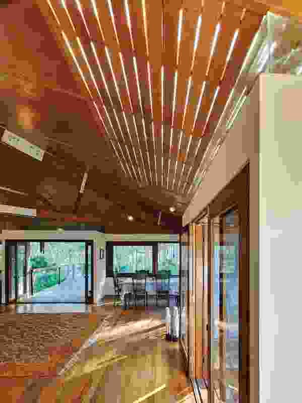 A perimeter of windows allows abundant light to enter the house.