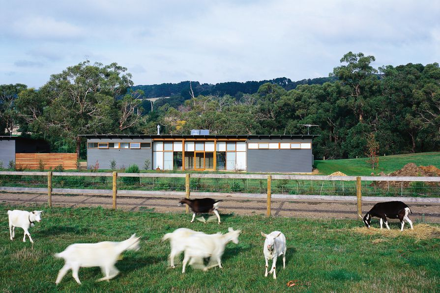 The project grew into a full masterplan that included future business plans for becoming makers of goats' cheese.