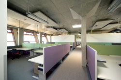 The open-plan