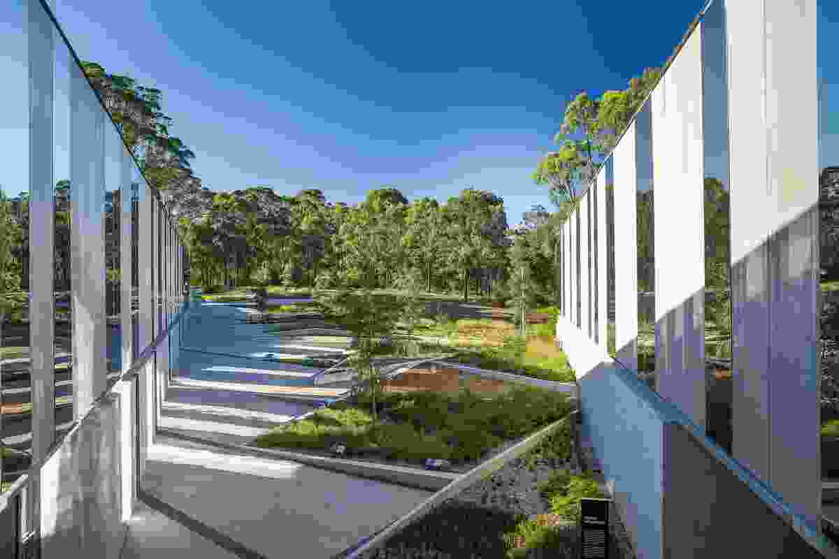 Light and shadows are refracted by the building's reflective planes, augmenting the garden's complex geometries.