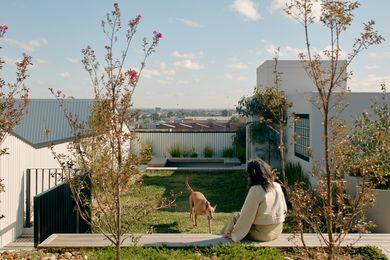Breese St由dko建筑学与呼吸建筑和milieu属性。