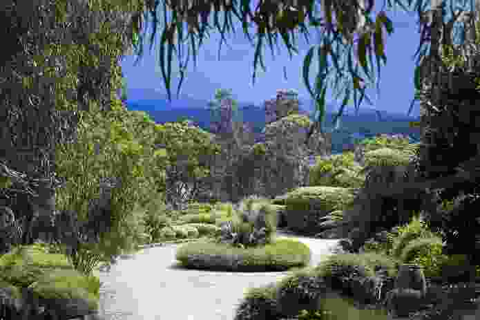Focal garden in driveway, Horse Island.