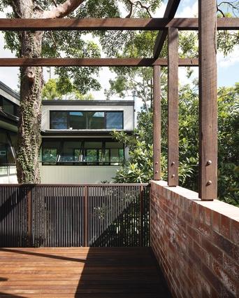 St Lucia House 2 (2013): The plan wraps around a treasured eucalypt.