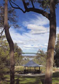 View over Kings Park towards the Swan River, with the slender form of the Lotterywest Federation Walkway bridge in the middle ground and the Watergarden Pavilion in the foreground. The walkway opens up new views and ways of interpreting the park.