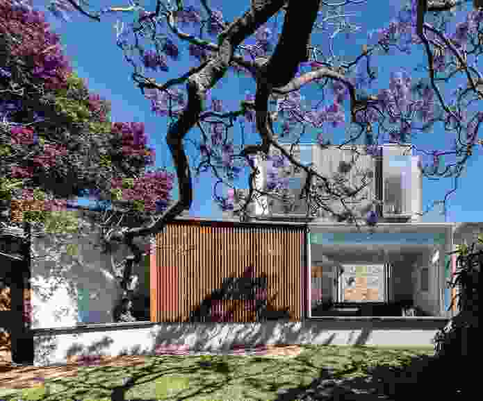 Jac House (2017) celebrates the seasons in a love letter to a jacaranda tree.