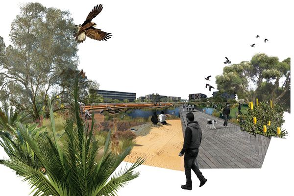 The Living Knowledge Stream Design Guidance for Curtin University by Syrinx Environmental, Sync7 and Noel Nannup