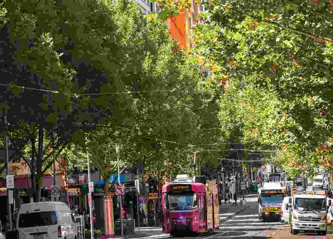 The City of Melbourne's Urban Forest Strategy seeks to increase canopy cover and species diversity in Melbourne.