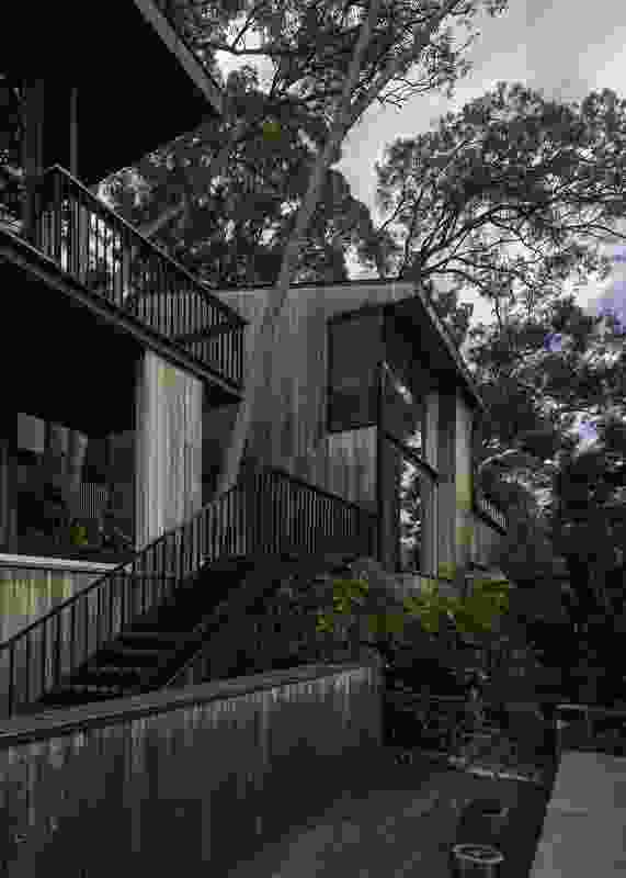 House in Noosa by MORQ.