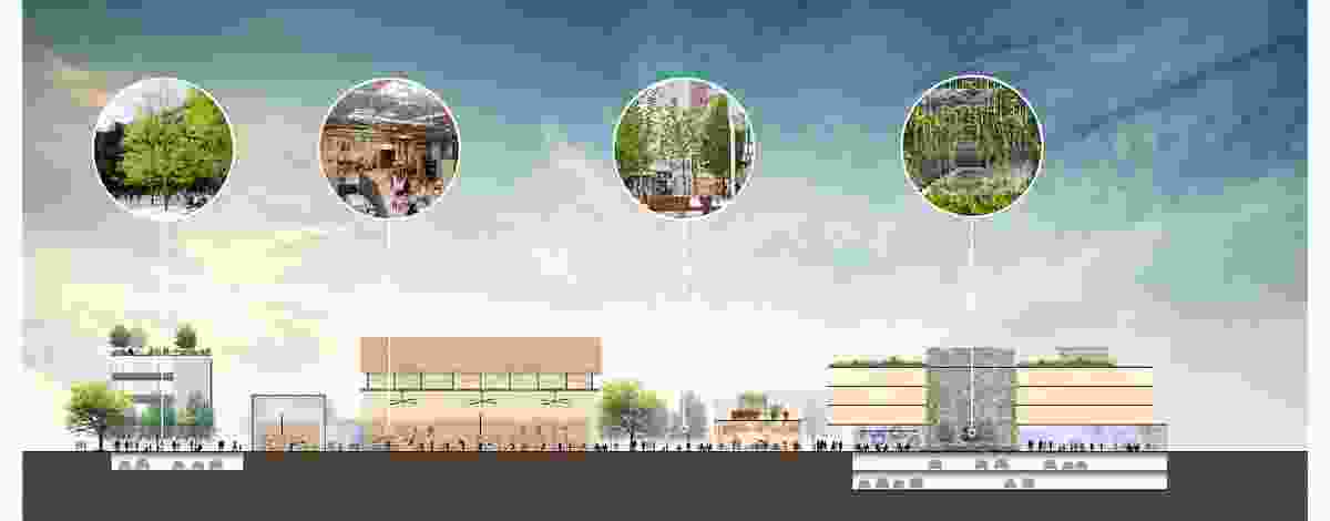 A sectional diagram of the proposed Kingston Arts Precinct by Fender Katsalidis and Oculus.