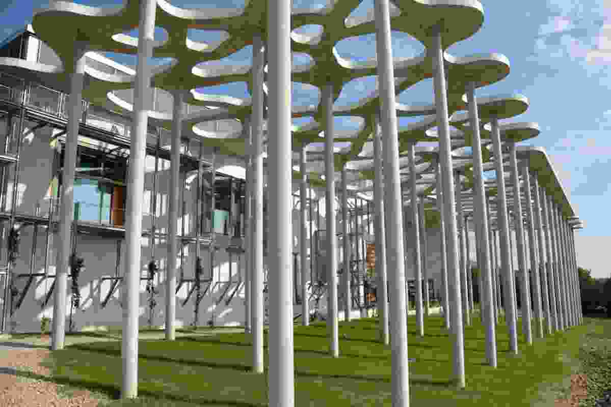 The forest of columns and concrete canopy beneath which selected cabins will eventually be suspended.
