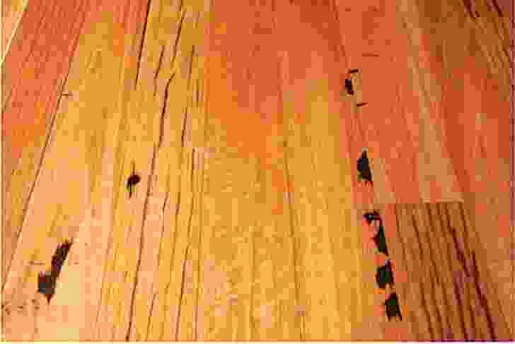 Recycled hardwood flooring.