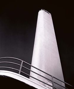 Shark tower,