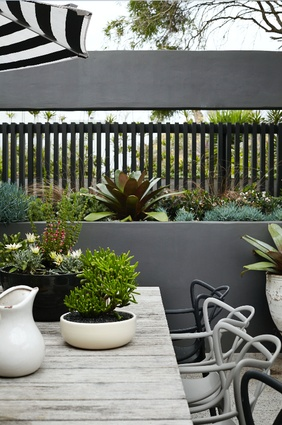 Adam Robinson of Adam Robinson Design won Gold Award & Best in Category in Landscape Design - Balcony or Interiorscape.