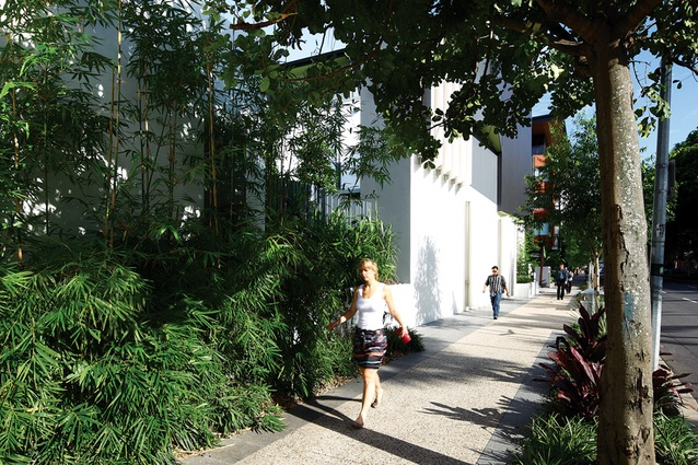 The Melbourne Street side of SW1 uses awnings and plantings to soften the pedestrian experience.