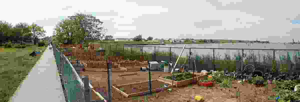 Beach 41st Street Houses Community Garden by Till Design (the professional practice of Victoria Marshall) is a post-Hurricane Sandy upgrade of a community garden located in the Rockaways, Queens, USA.