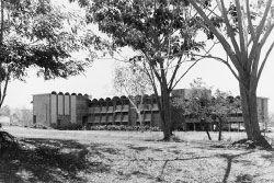 Papua New Guinea Arts Law Complex.