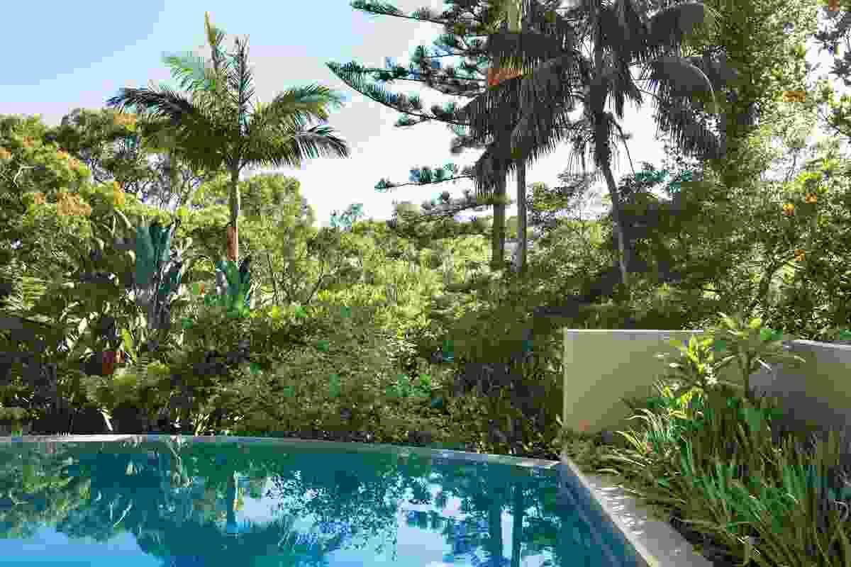 Lush tropical plantings at the rear of the garden are reflected on the pool's surface.