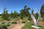 Five architects to compete for design of visitor centre for regional NSW botanic garden
