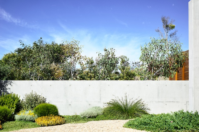 Blairgowrie Beach House by Acre. Brett Robinson of Acre Studio won Best in Category in Landscape Design - Rural or Coastal.