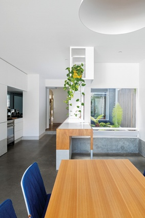 The metal and plywood kitchen joinery acts as a tenon that binds the kitchen galley to the rear living space.